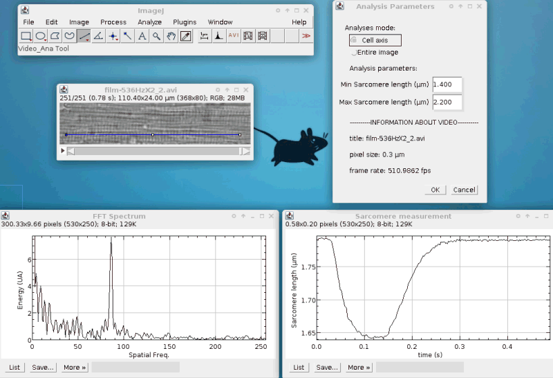 SarCoptiM - High Frequency Sarcomere Length Measurement